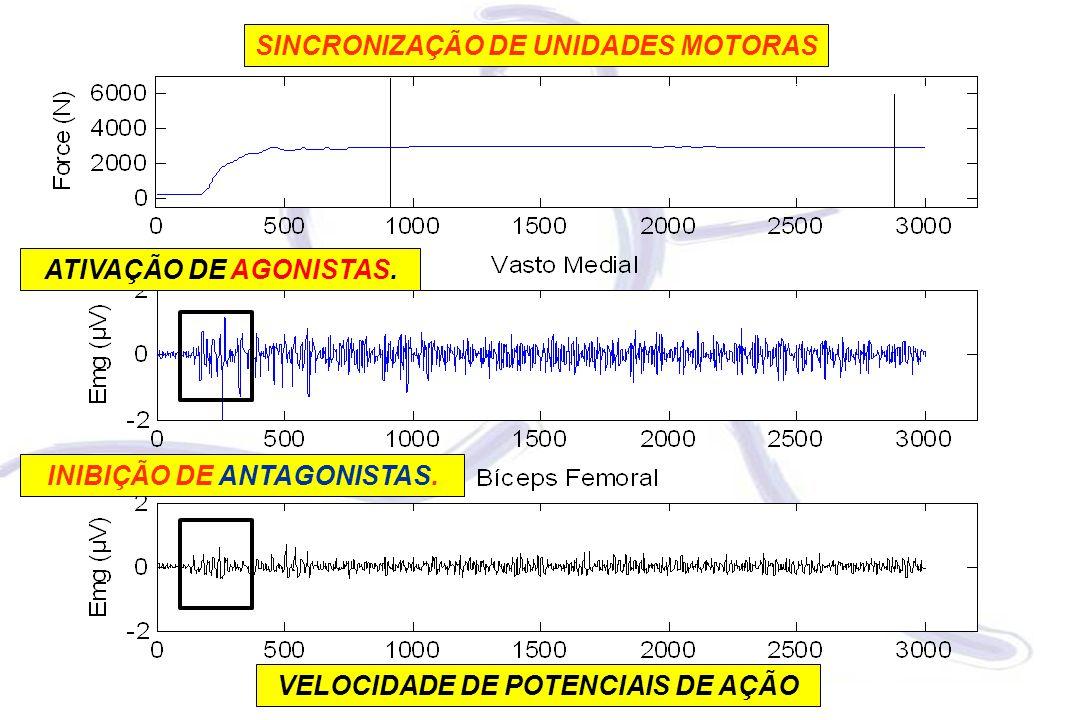 VELOCIDADE DE POTENCIAIS DE AÇÃO SINCRONIZAÇÃO DE UNIDADES MOTORAS ATIVAÇÃO DE AGONISTAS. INIBIÇÃO DE ANTAGONISTAS.