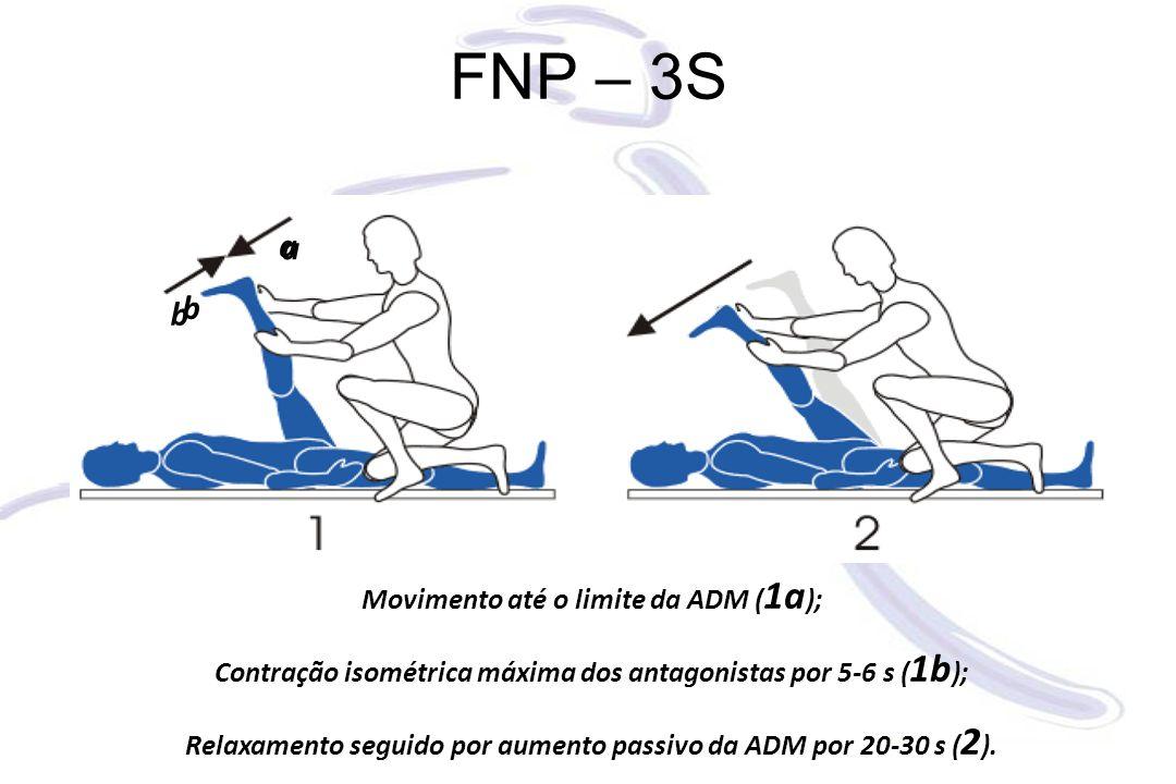 FNP – 3S Movimento até o limite da ADM ( 1a ); Contração isométrica máxima dos antagonistas por 5-6 s ( 1b ); Relaxamento seguido por aumento passivo da ADM por 20-30 s ( 2 ).