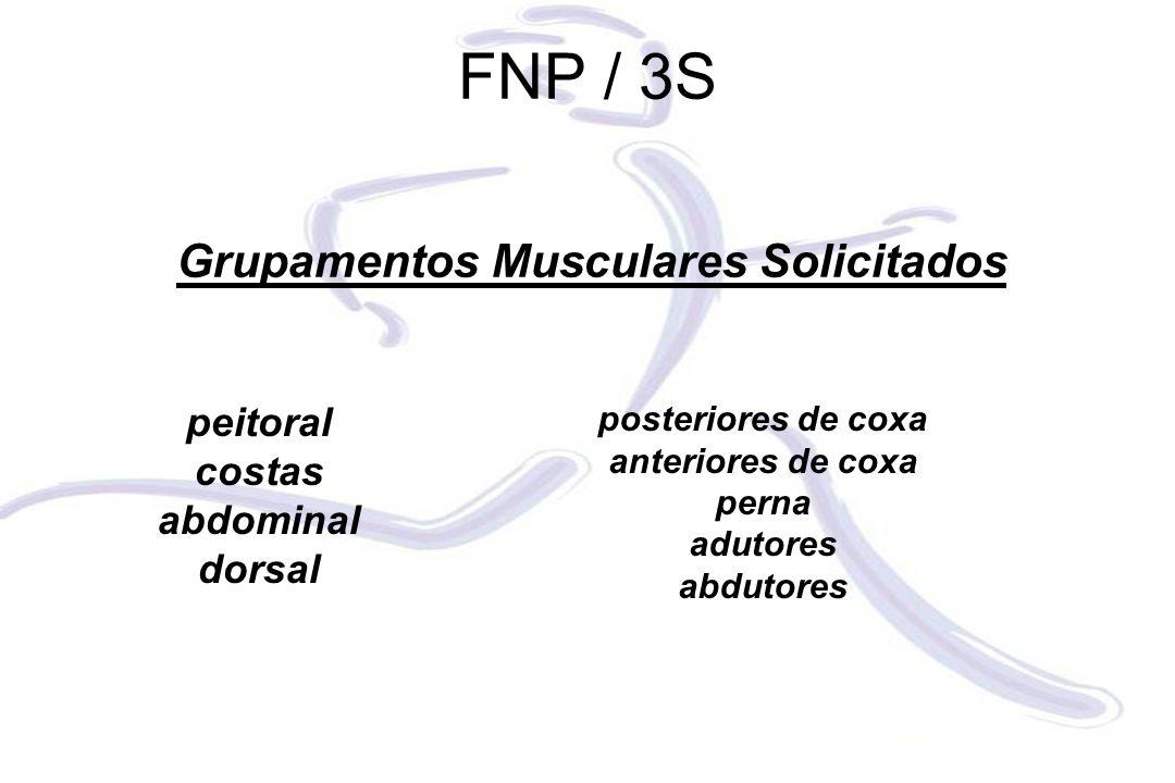 Grupamentos Musculares Solicitados peitoral costas abdominal dorsal posteriores de coxa anteriores de coxa perna adutores abdutores