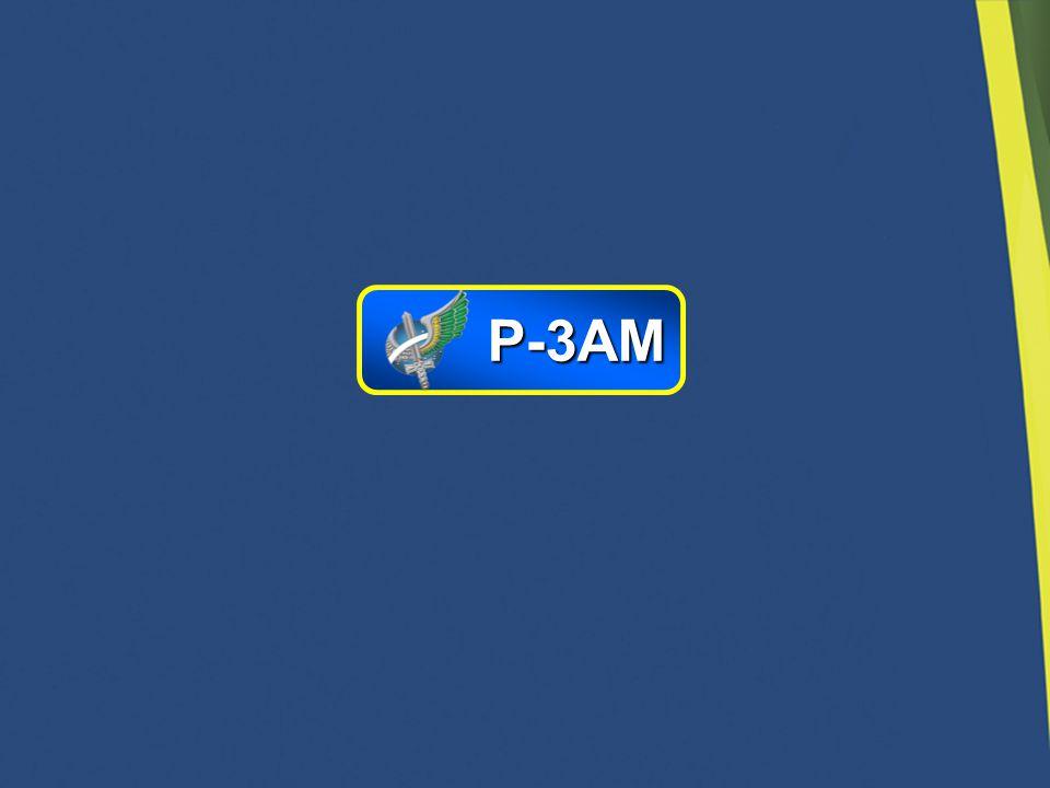 P-3AM