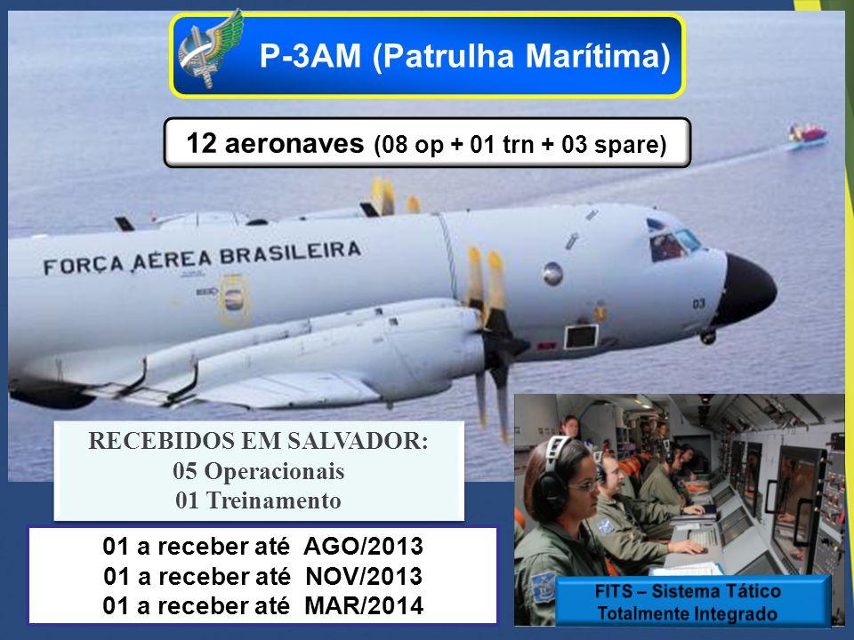 12 aeronaves (08 op + 01 trn + 03 spare) RECEBIDOS EM SALVADOR: 05 Operacionais 01 Treinamento RECEBIDOS EM SALVADOR: 05 Operacionais 01 Treinamento P