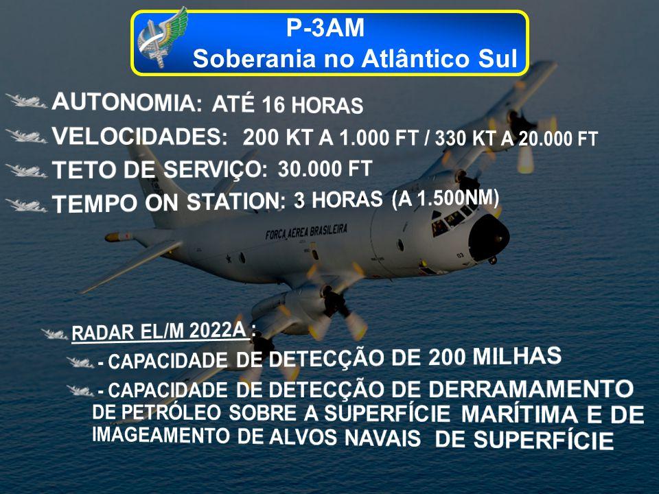 P-3AM Soberania no Atlântico Sul