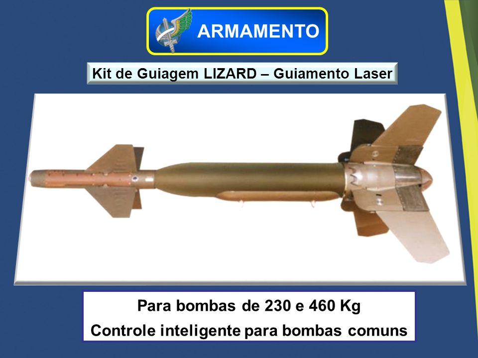Para bombas de 230 e 460 Kg Controle inteligente para bombas comuns Kit de Guiagem LIZARD – Guiamento Laser ARMAMENTO