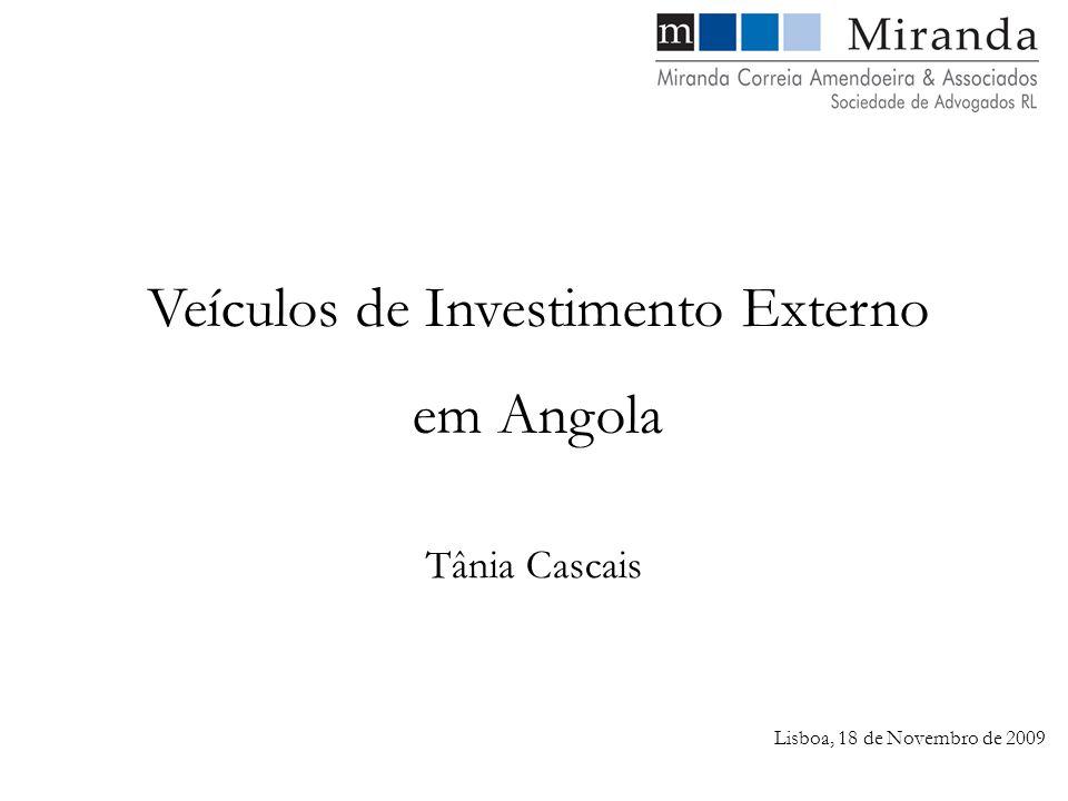Lisboa, 18 de Novembro de 2009 Tânia Cascais Veículos de Investimento Externo em Angola