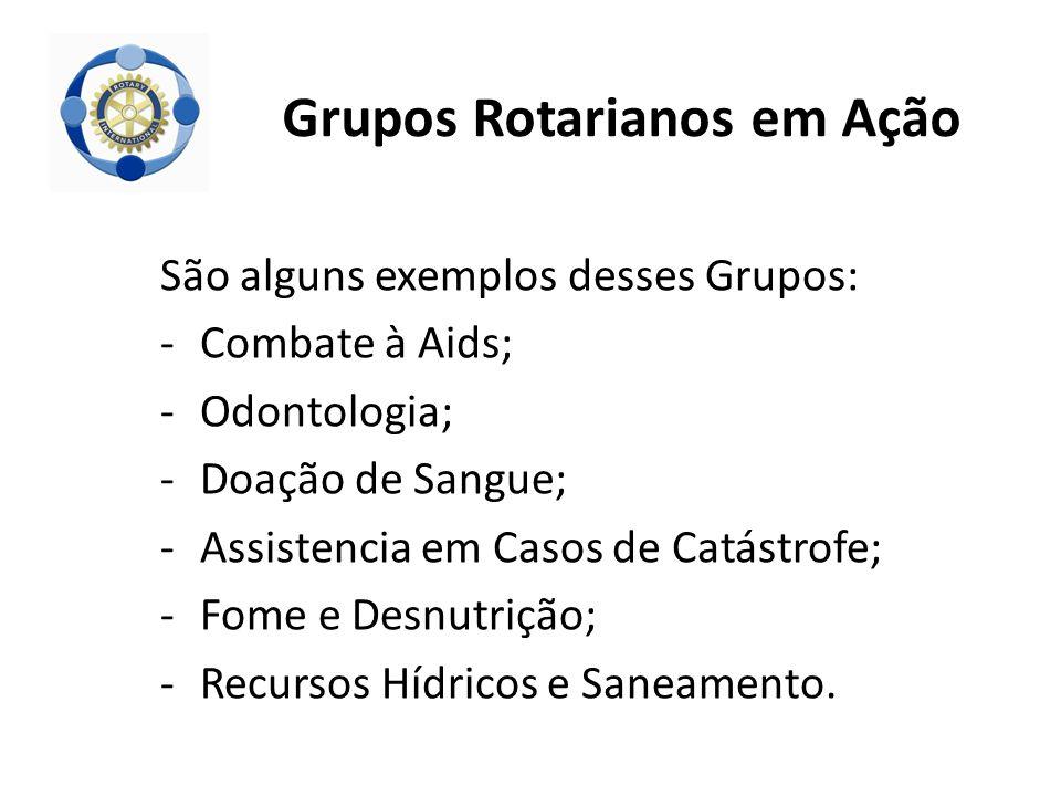 São alguns exemplos desses Grupos: -Combate à Aids; -Odontologia; -Doação de Sangue; -Assistencia em Casos de Catástrofe; -Fome e Desnutrição; -Recurs