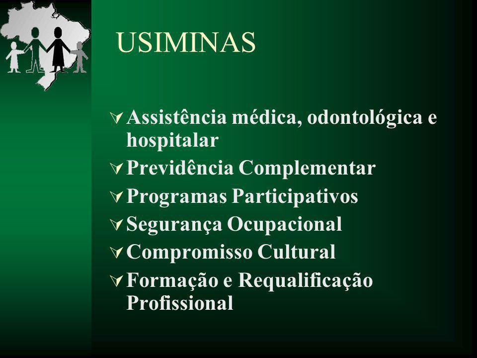 USIMINAS  Assistência médica, odontológica e hospitalar  Previdência Complementar  Programas Participativos  Segurança Ocupacional  Compromisso C