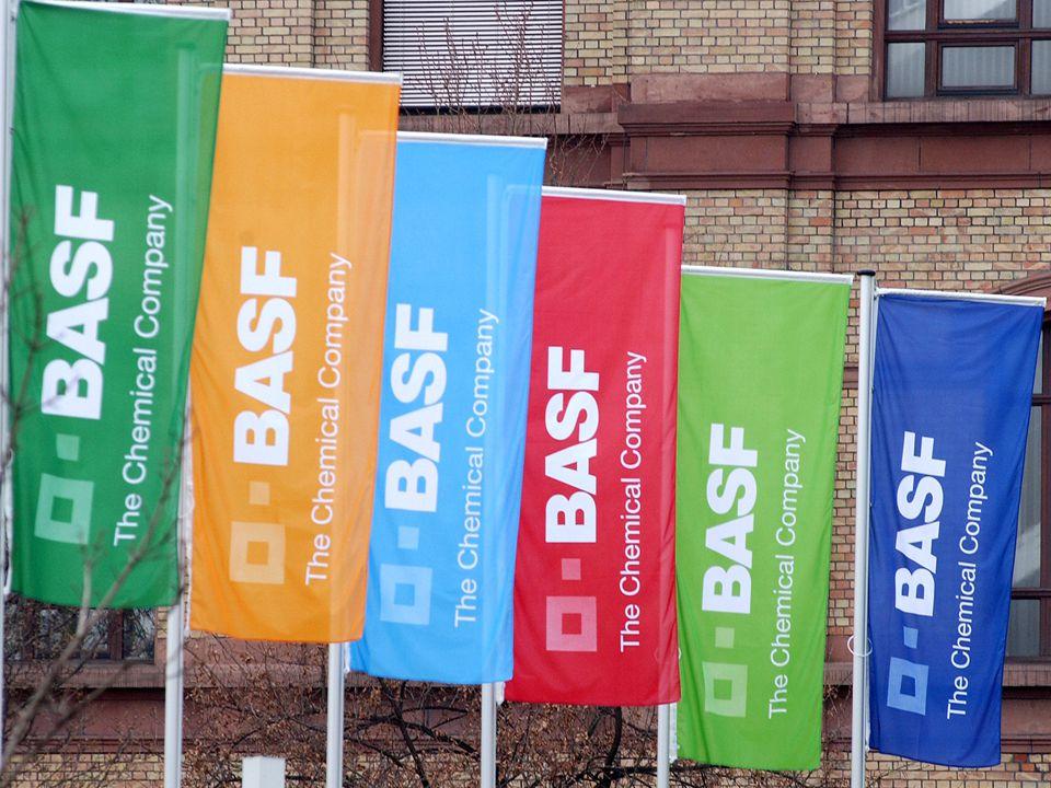A implantação de diretrizes e práticas de gestão nas empresas Caso BASF na América do Sul Wagner Brunini CONOPARH - Londrina 19/09/2008