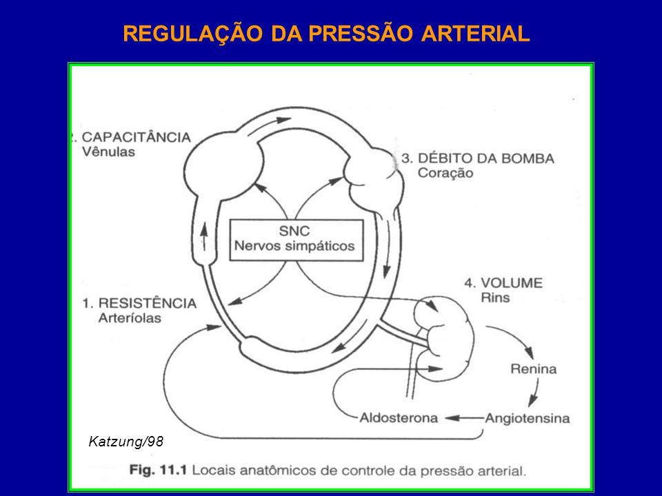 ANTI-HIPERTENSIVOS Katzung/98 GUANETIDINA RESERPINA NE R R R