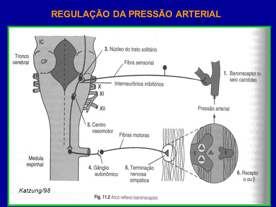 Estudo recomendado EDEMA AGUDO DE PULMÃO Fisiopatologia Conduta gerais no tratamento Conduta Farmacológica.
