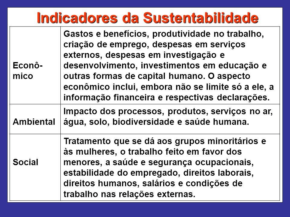 Indicadores da Sustentabilidade Econô- mico Gastos e benefícios, produtividade no trabalho, criação de emprego, despesas em serviços externos, despesas em investigação e desenvolvimento, investimentos em educação e outras formas de capital humano.