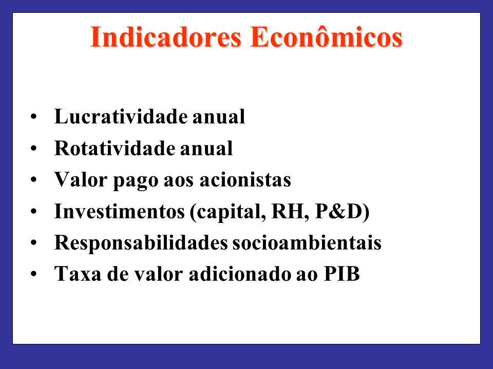 Indicadores Econômicos Lucratividade anual Rotatividade anual Valor pago aos acionistas Investimentos (capital, RH, P&D) Responsabilidades socioambientais Taxa de valor adicionado ao PIB