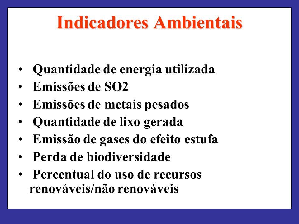 Indicadores Ambientais Quantidade de energia utilizada Emissões de SO2 Emissões de metais pesados Quantidade de lixo gerada Emissão de gases do efeito