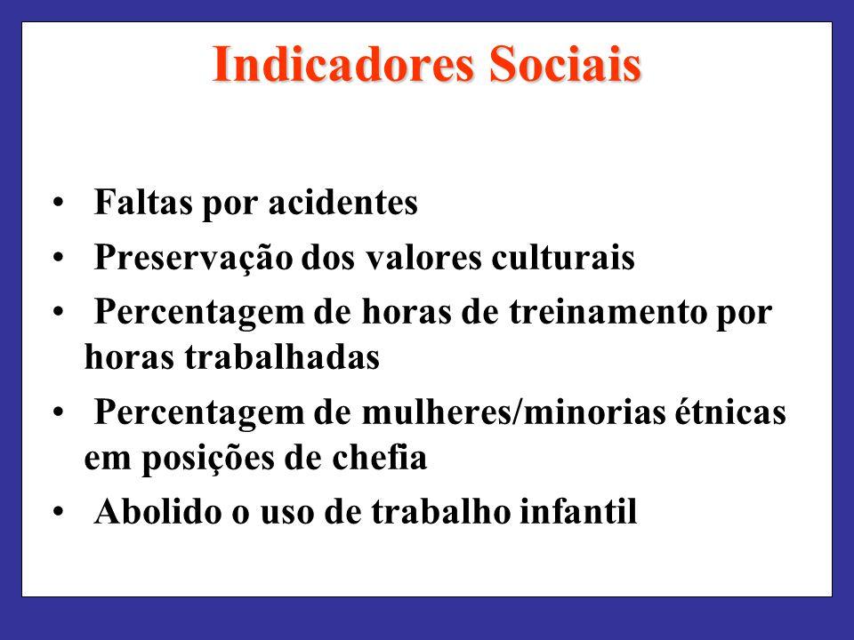 Indicadores Sociais Faltas por acidentes Preservação dos valores culturais Percentagem de horas de treinamento por horas trabalhadas Percentagem de mulheres/minorias étnicas em posições de chefia Abolido o uso de trabalho infantil