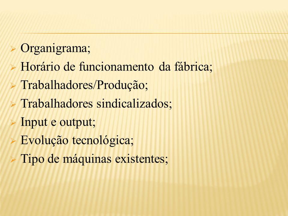  Organigrama;  Horário de funcionamento da fábrica;  Trabalhadores/Produção;  Trabalhadores sindicalizados;  Input e output;  Evolução tecnológica;  Tipo de máquinas existentes;