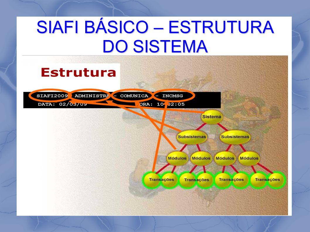 SIAFI BÁSICO – ESTRUTURA DO SISTEMA