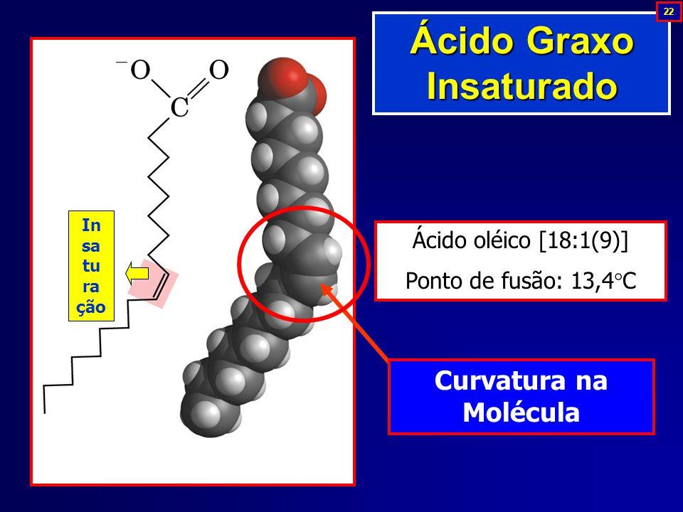 Ácido oléico [18:1(9)] Ponto de fusão: 13,4  C In sa tu ra ção Curvatura na Molécula Ácido Graxo Insaturado 22