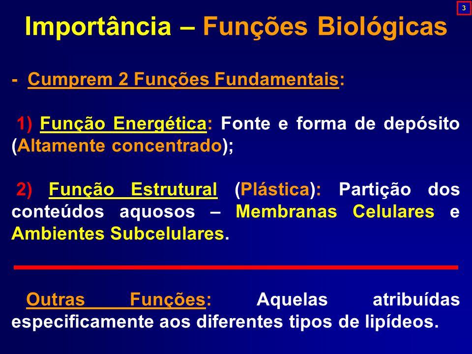 Importância – Funções Biológicas - Cumprem 2 Funções Fundamentais: 1) Função Energética: Fonte e forma de depósito (Altamente concentrado); 2) Função Estrutural (Plástica): Partição dos conteúdos aquosos – Membranas Celulares e Ambientes Subcelulares.