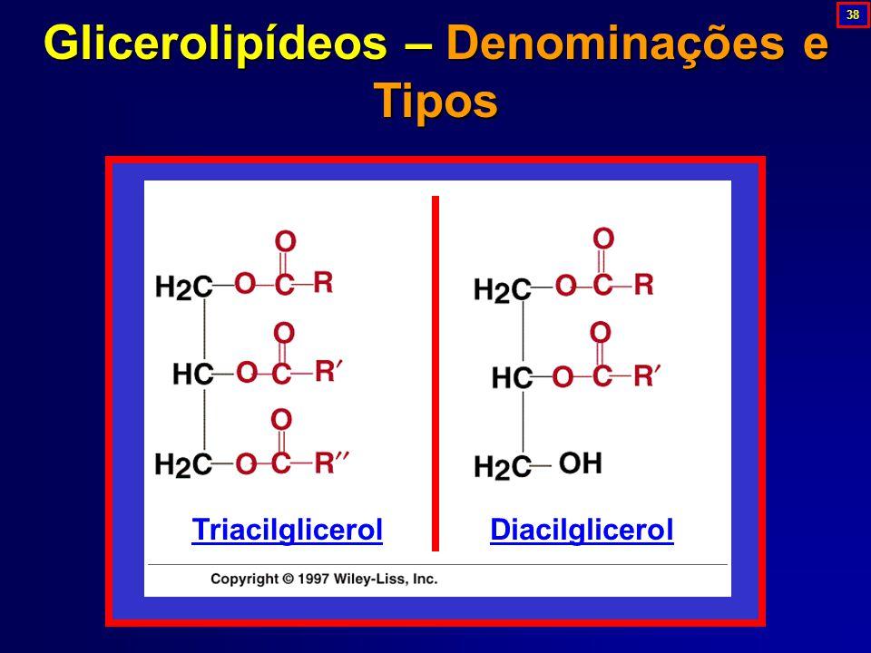 Glicerolipídeos – Denominações e Tipos TriacilglicerolDiacilglicerol 38