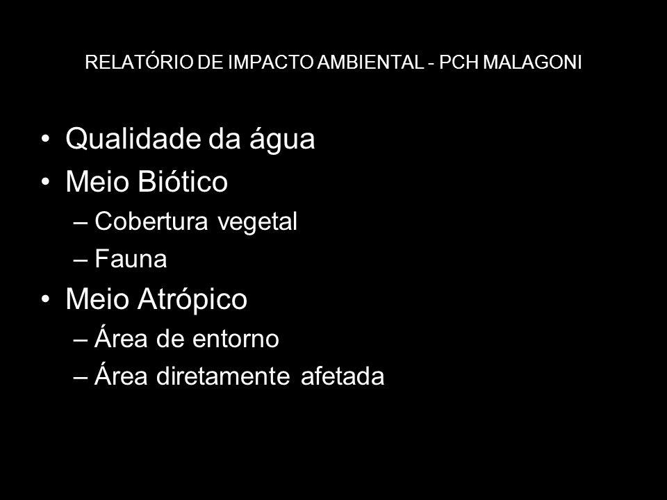 RELATÓRIO DE IMPACTO AMBIENTAL - PCH MALAGONI Qualidade da água Meio Biótico –Cobertura vegetal –Fauna Meio Atrópico –Área de entorno –Área diretament