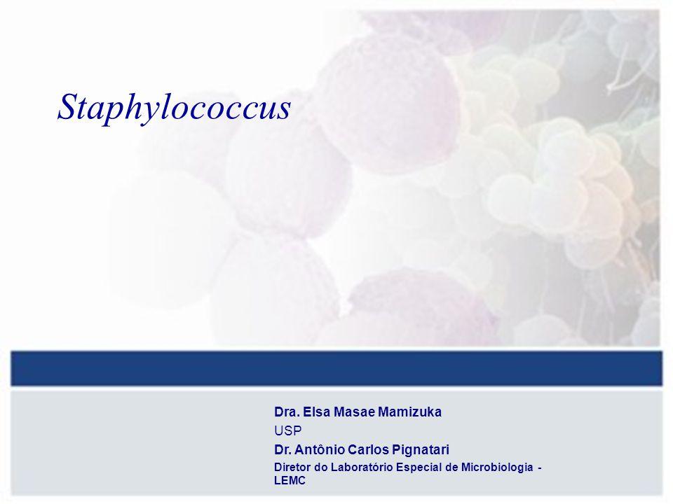 No laboratório clínico, usualmente se faz a diferenciação entre Staphylococcus coagulase positiva (S.