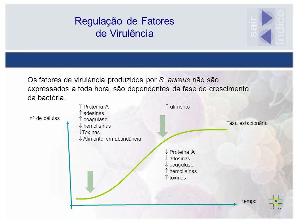 Regulação de Fatores de Virulência Os fatores de virulência produzidos por S. aureus não são expressados a toda hora, são dependentes da fase de cresc