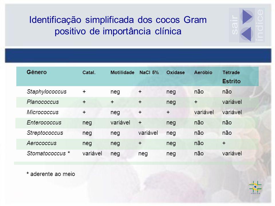 Gênero Catal.Motilidade NaCl 5% OxidaseAeróbio Tétrade Estrito Staphylococcus +neg+negnãonão Planococcus+ ++neg+variável Micrococcus + neg+ +variávelv