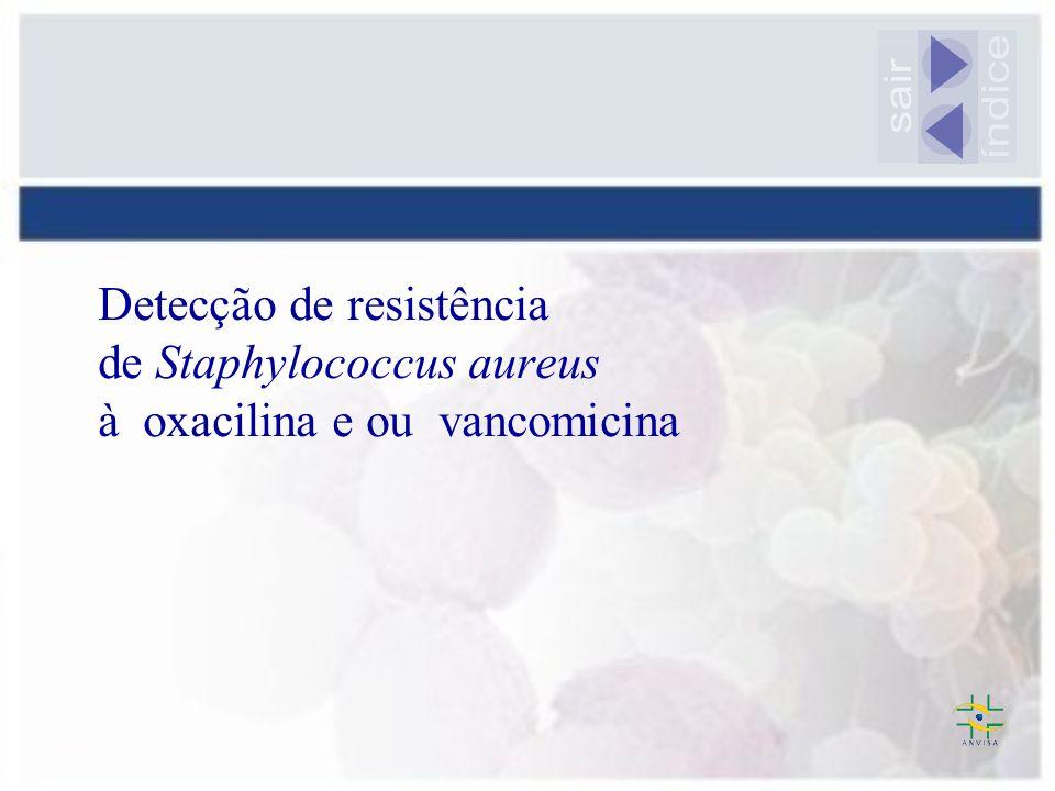 Detecção de resistência de Staphylococcus aureus à oxacilina e ou vancomicina