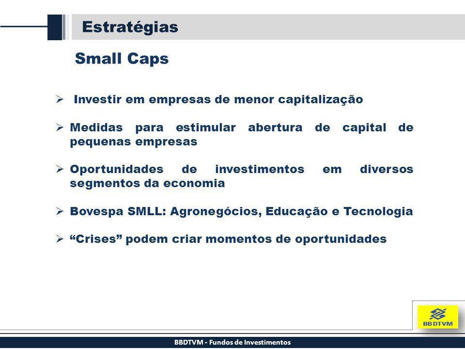 BBDTVM - Fundos de Investimentos Estratégias Small Caps  Investir em empresas de menor capitalização  Medidas para estimular abertura de capital de