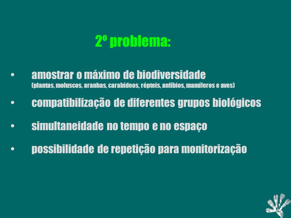 2º problema: amostrar o máximo de biodiversidade (plantas, moluscos, aranhas, carabídeos, répteis, anfíbios, mamíferos e aves) compatibilização de diferentes grupos biológicos simultaneidade no tempo e no espaço possibilidade de repetição para monitorização