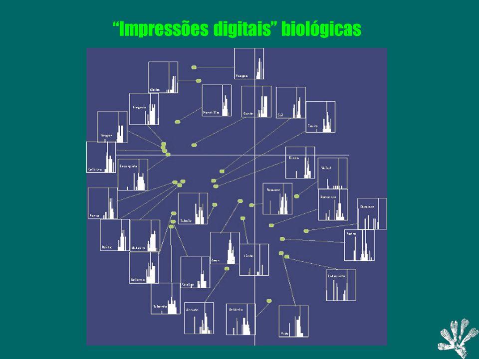 Impressões digitais biológicas