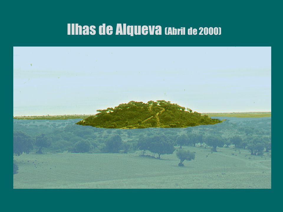 Ilhas de Alqueva (Abril de 2000)