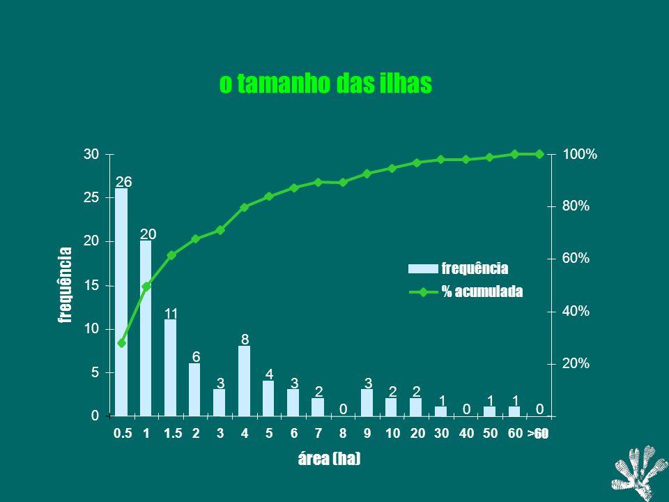 26 20 11 6 3 8 4 3 2 0 3 22 1 0 11 0 0 5 10 15 20 25 30 0.511.523456789102030405060 >60 área (ha) frequência 20% 40% 60% 80% 100% frequência % acumulada o tamanho das ilhas