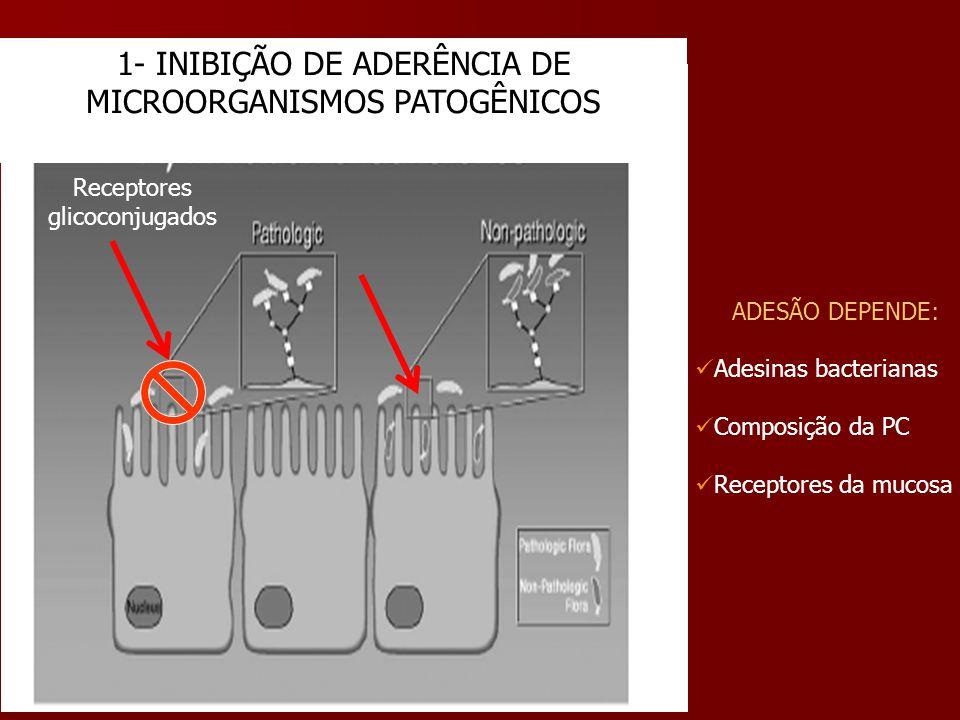 1- INIBIÇÃO DE ADERÊNCIA DE MICROORGANISMOS PATOGÊNICOS Receptores glicoconjugados ADESÃO DEPENDE: Adesinas bacterianas Composição da PC Receptores da