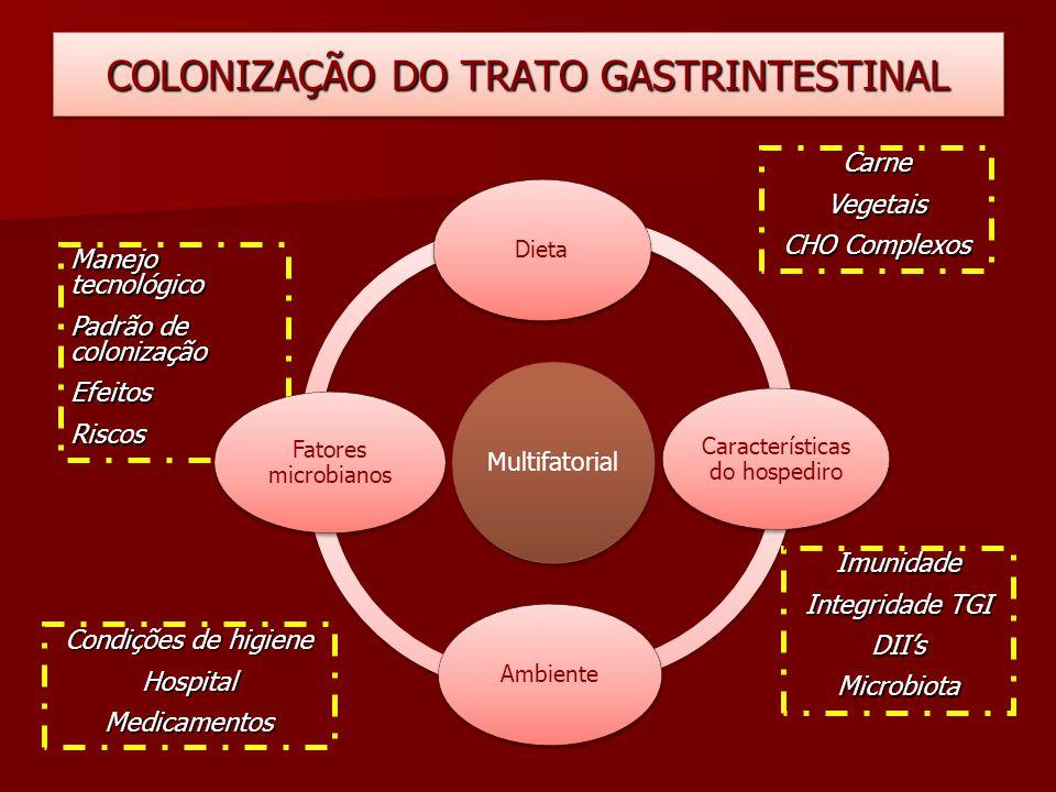 Manejo tecnológico Padrão de colonização EfeitosRiscos COLONIZAÇÃO DO TRATO GASTRINTESTINAL Multifatorial Dieta Características do hospediro Ambiente