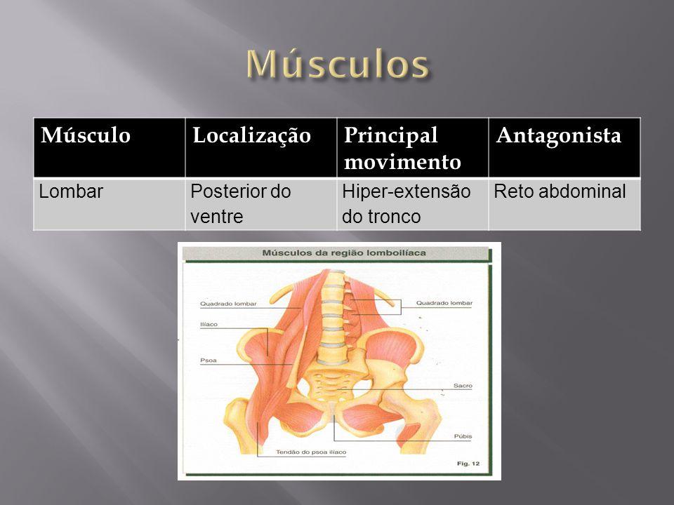MúsculoLocalizaçãoPrincipal movimento Antagonista LombarPosterior do ventre Hiper-extensão do tronco Reto abdominal