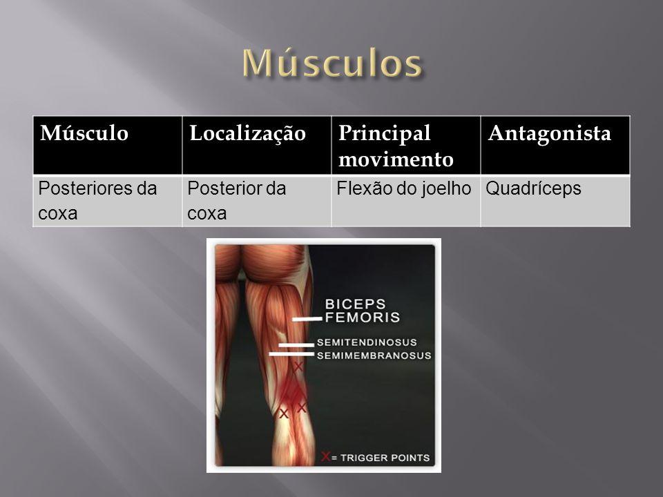 MúsculoLocalizaçãoPrincipal movimento Antagonista Posteriores da coxa Posterior da coxa Flexão do joelhoQuadríceps