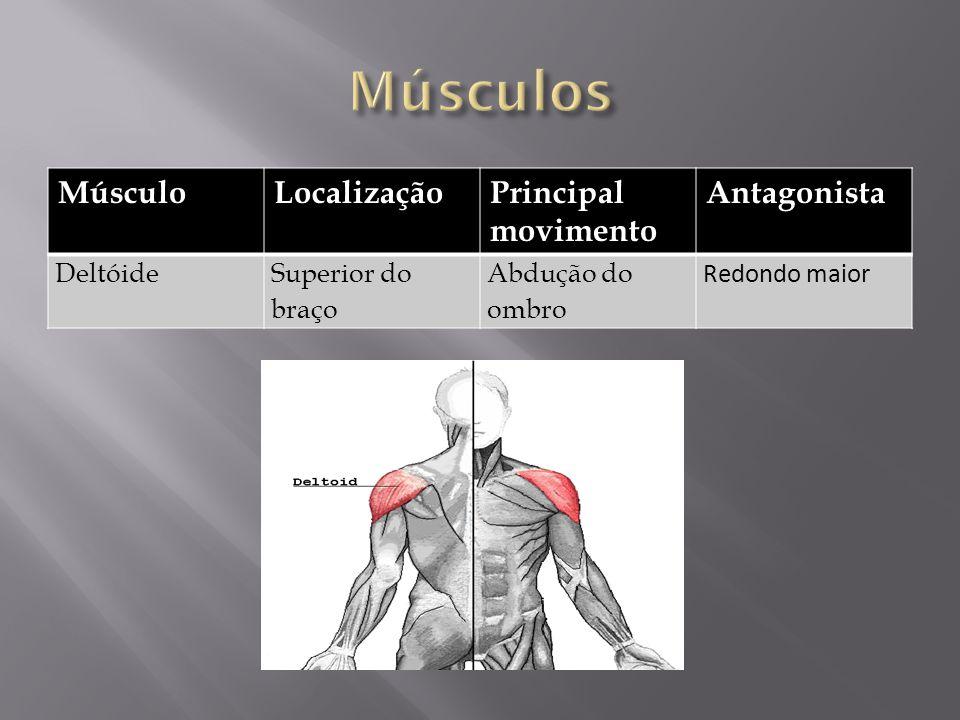 MúsculoLocalizaçãoPrincipal movimento Antagonista DeltóideSuperior do braço Abdução do ombro Redondo maior