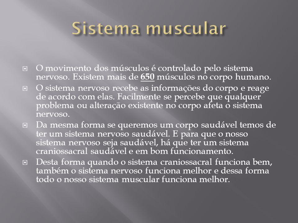  O movimento dos músculos é controlado pelo sistema nervoso. Existem mais de 650 músculos no corpo humano.  O sistema nervoso recebe as informações