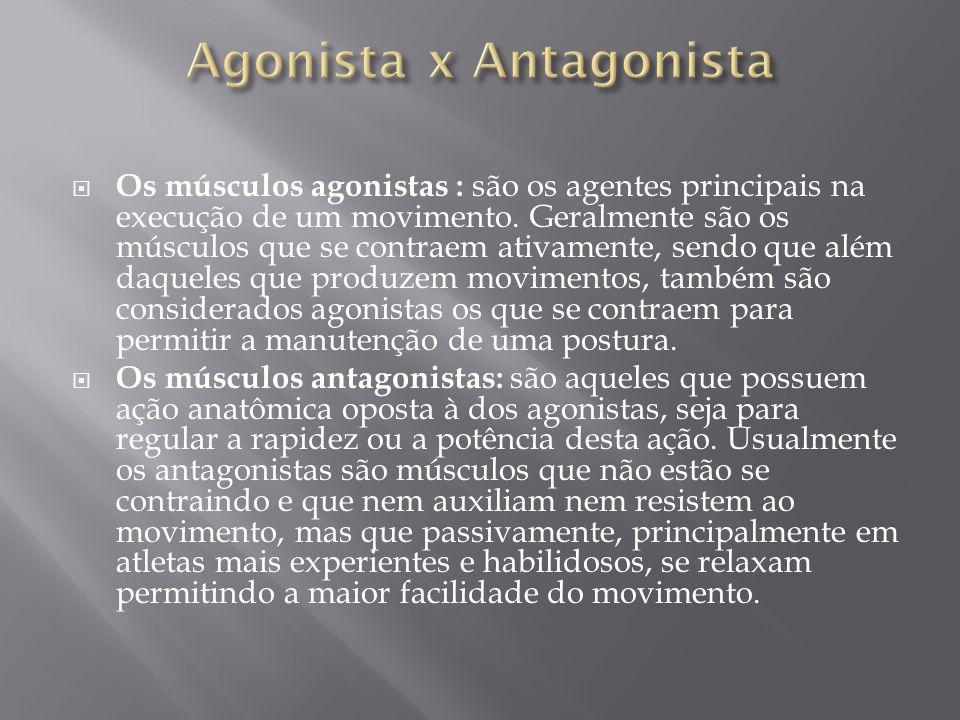  Os músculos agonistas : são os agentes principais na execução de um movimento. Geralmente são os músculos que se contraem ativamente, sendo que além
