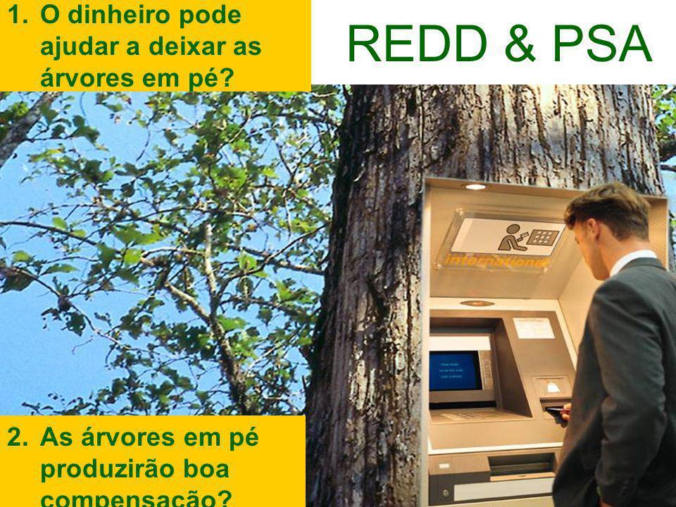 3.03.2009, MMA, Brasília 1.O dinheiro pode ajudar a deixar as árvores em pé.