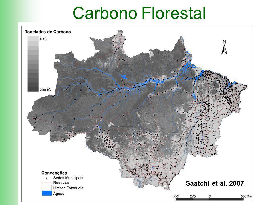 3.03.2009, MMA, Brasília Carbono Florestal Saatchi et al. 2007