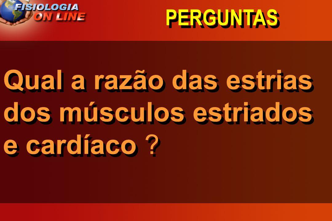 PERGUNTAS Qual a razão das estrias dos músculos estriados e cardíaco ?