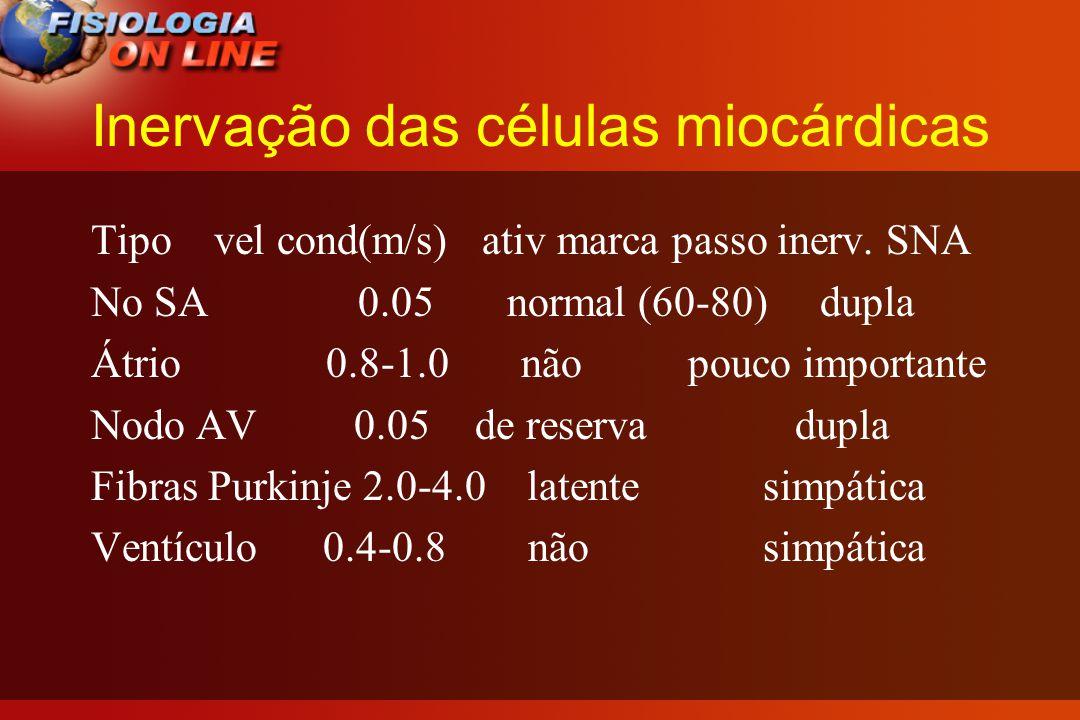 PERGUNTAS - O QUE ACONTECE COM ↑ CA++ NO CORAÇÃO E NO SANGUE (LEC) .