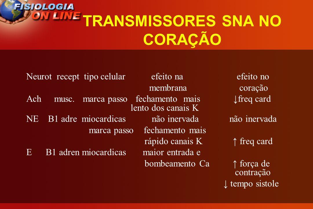 TRANSMISSORES SNA NO CORAÇÃO Neurot recept tipo celular efeito na efeito no membrana coração Achmusc.