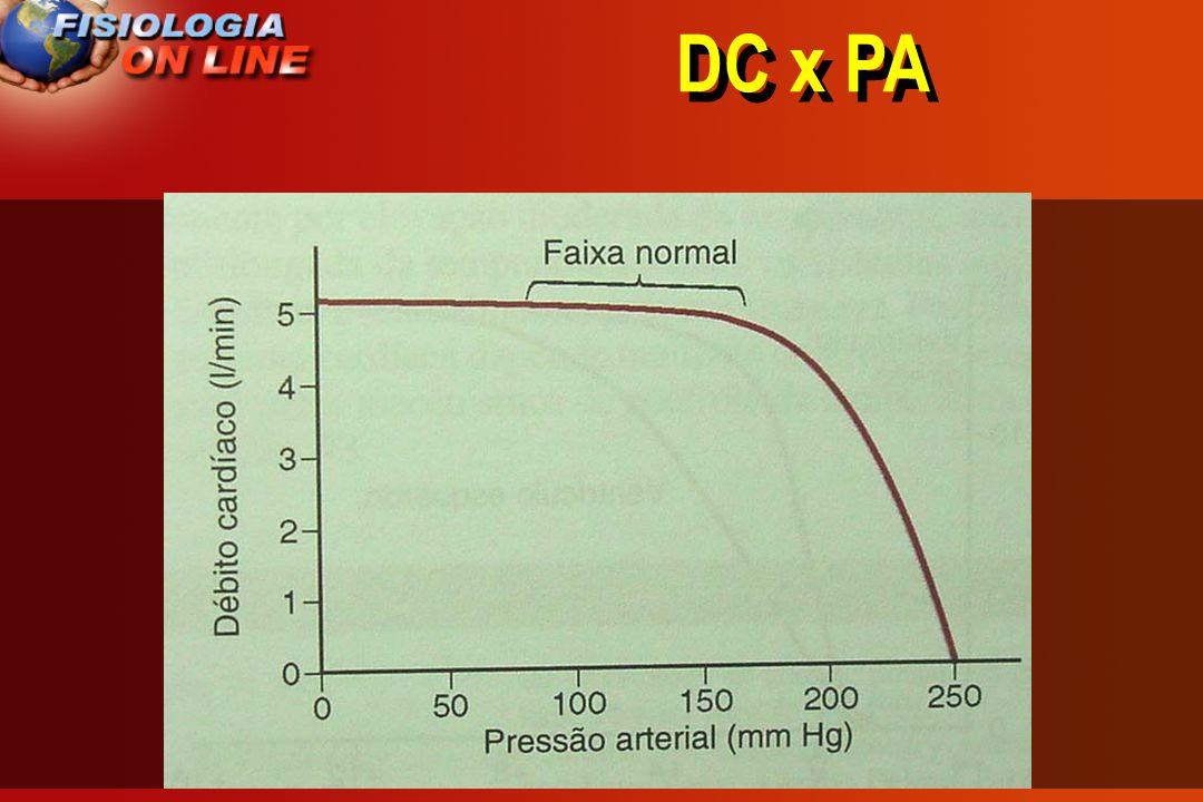 DC x PA