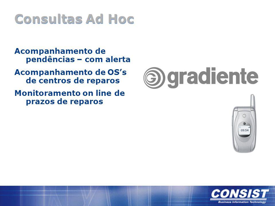 Consultas Ad Hoc Acompanhamento de pendências – com alerta Acompanhamento de OS's de centros de reparos Monitoramento on line de prazos de reparos