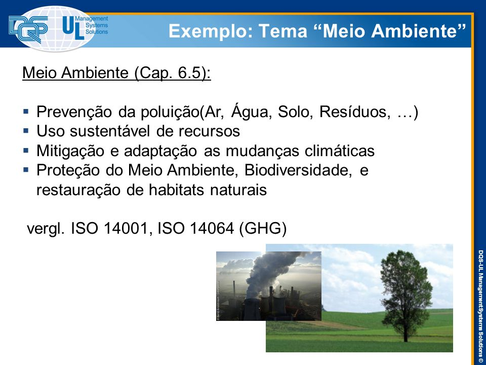 DQS-UL Management Systems Solutions © Exemplo: Tema Meio Ambiente Meio Ambiente (Cap.