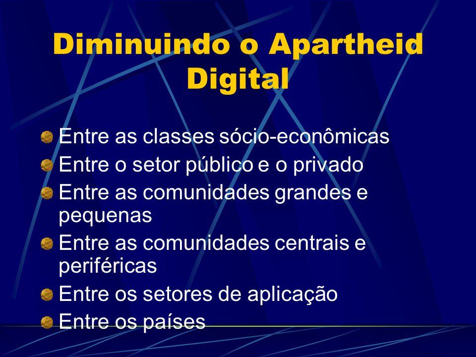 Diminuindo o Apartheid Digital Entre as classes sócio-econômicas Entre o setor público e o privado Entre as comunidades grandes e pequenas Entre as comunidades centrais e periféricas Entre os setores de aplicação Entre os países