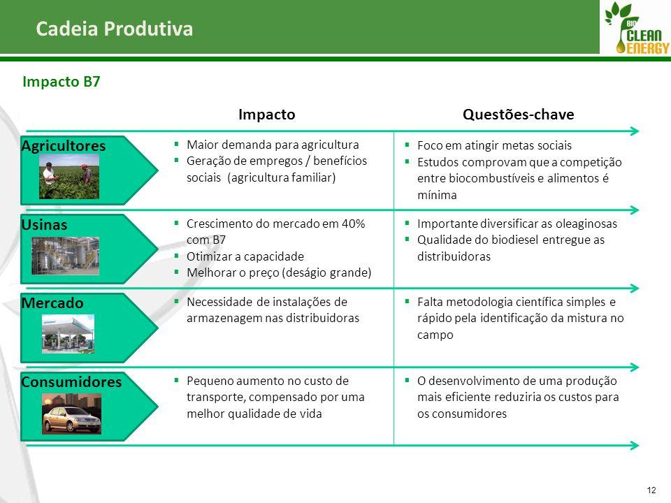 Cadeia Produtiva Impacto B7 12 Agricultores Usinas Mercado Consumidores ImpactoQuestões-chave  Maior demanda para agricultura  Geração de empregos /