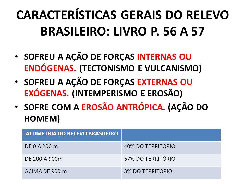 CARACTERÍSTICAS GERAIS DO RELEVO BRASILEIRO: LIVRO P.